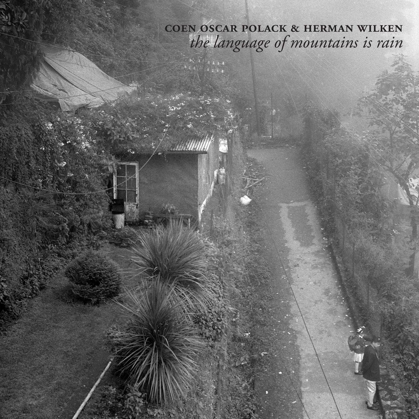 NM031: coen oscar polack & herman wilken - the language of mountains is rain