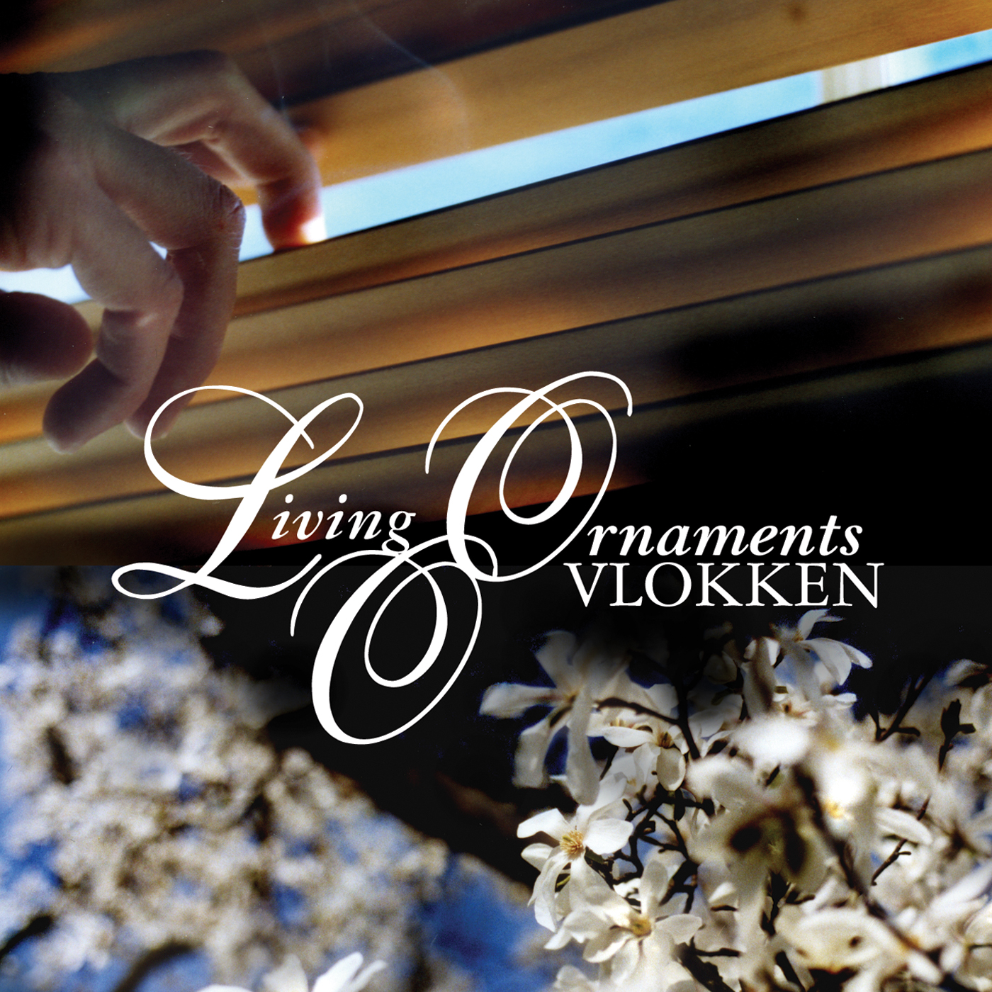 NM017: living ornaments - vlokken