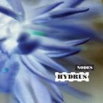 NM053: hydrus - nodes