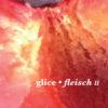 nm074-glice-fleisch-ii